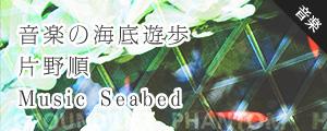 音楽の海底散歩 片野順 Music Seabed